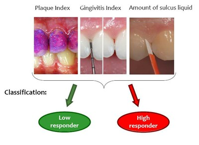 Analysing supra gingival biofilm formation