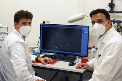 Prof. Marc Bramkamp (rechts) und Dr. Helge Feddersen konnten mittels moderner Bildgebungsverfahren neue Erkenntnisse darüber gewinnen, wie Bacillus subtilis die Funktionsweise seines Zellteilungssystems anpassen konnte. © Prof. Marc Bramkamp